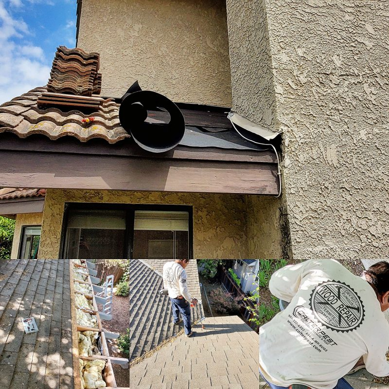 Excessive Moisture, Roof and Termite Damage Repairs